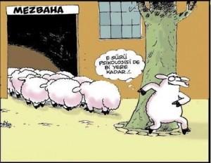 komik-bayram-mesajlari-yni